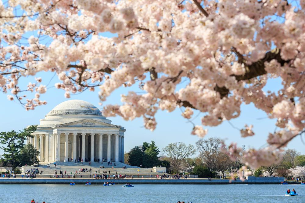 A Washington D.C. building.